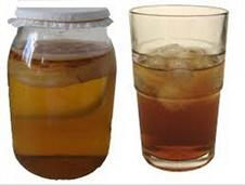 آشنایی با خواص چای کامبوجا؛ معجزهای شفابخش