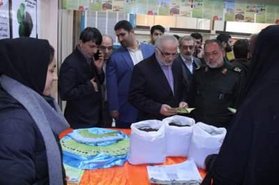 نمایشگاه اقتصاد مقاومتی بسیج مازندران گشایش یافت