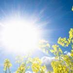 افزایش دمای هوای مازندران طی روزهای آینده