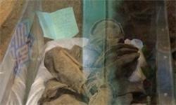 احراز هویت شهید غواصی که تصاویرش در رسانهها منتشر شده بود+تصاویر