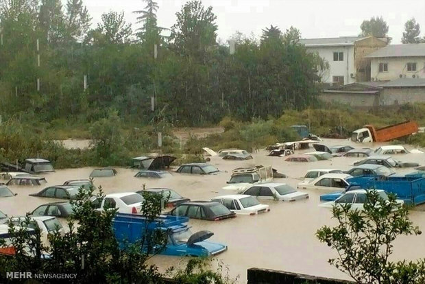 وزارت بهداشت: شیوع بیماری واگیر در مناطق سیلزده نداریم / شامپوی ضدشپش به میزان کافی تامین است