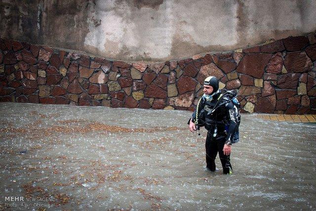 شنای غواصان در خیابان های شیراز !/عکس