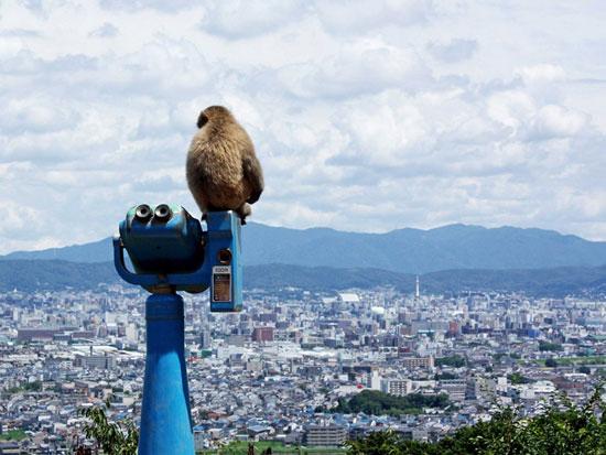 تصاویر/دیدنی ترین شهر دنیا اینجاست