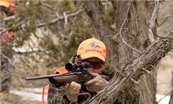 حضور نخستین گروههای پرندگان مهاجر در طبیعت مازندران / شکار ممنوع!