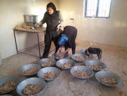 مرکز نگهداری ۳۰۰ سگ ولگرد در زنجان (+عکس)