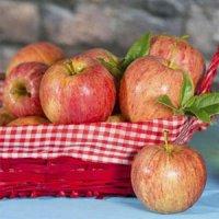 ۹ ماده غذایی موثر برای رفع یبوست