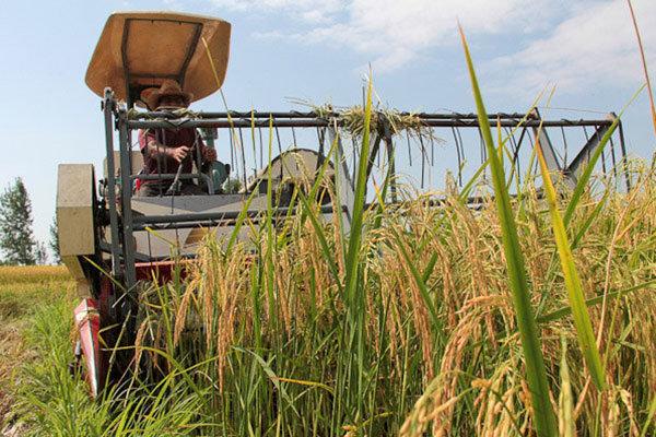 جدی گرفتن حفظ کاربری  به جهت اراضی کشاورزی محدود