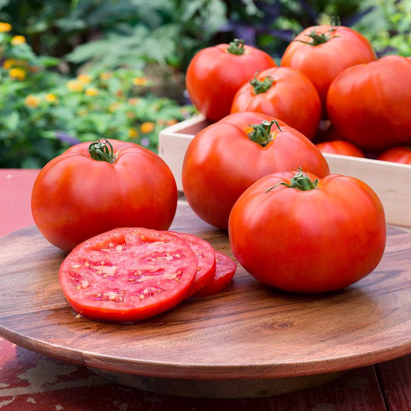 این ۷ گیاه را قبل از مصرف، حتما بپزید
