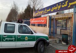 تایید اولین مورد بیماری آنفلوانزای فوق حاد پرندگان در استان+ تصاویر