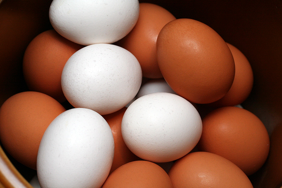 مصرف روزی یک تخممرغ برای کودکان زیر ۷ سال مجاز است؟