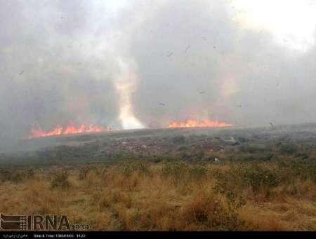 ۴هکتار از مراتع وباغ های لاریجان آمل در آتش سوخت