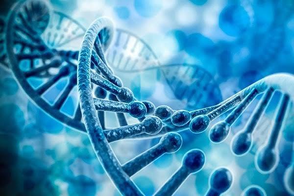ارتباط ژنتیکی دیابت و بیماری قلبی