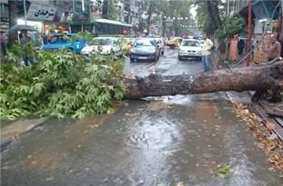 احتمال قطعی برق با توجه به وقوع طوفان در مازندران/آمادهباش اکیپهای شرکت برق استان