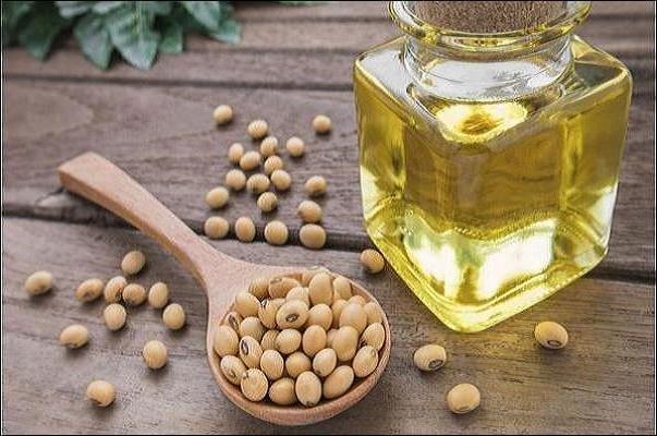 ۲۷۹ تن سویا در مازندران خرید تضمینی شده است