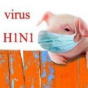 رئیس فراکسیون غذا و دارو در مجلس مطرح کرد؛مشاهده آنفلوانزای خوکی در ایران
