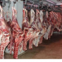 بررسی سلامت گوشت قرمز داخلی و وارداتی بر عهده سازمان دامپزشکی است/ تاکنون تخلف و مشکل خاصی در مورد سلامت گوشت های قرمز وارداتی یا داخلی به وجود نیامده است