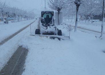 برف کیاسر را سفید پوش کرد+ عکس