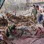 پزشکی قانونی: سیلاب در لرستان ۱۴ کشته داشت