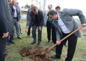 غرس نهال توسط استاندار مازندران در طرح نهالکاری همگانی برای ایرانی سرسبز