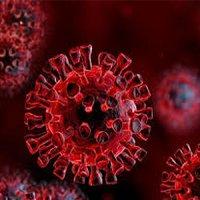 آنچه دانشمندان در مورد کروناویروس جدید شیوع در انگلیس میدانند