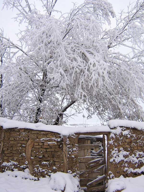 آسمانی صاف تا اواسط هفته در مازندران/ وزش باد گرم در ارتفاعات
