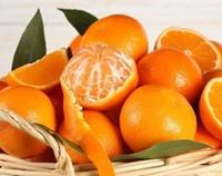 درپی طرح آلوده بودن نارنگی پاکستانی به کرم کشنده:  معاون حفظ نباتات: واردات نارنگی پاکستانی ممنوع است