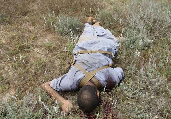 عناصر ضدانقلاب در غرب کشور درهم کوبیده شدند/شهادت سید عبدالحمید حسینی