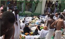اسامی کشتهشدگان مازندرانی حادثه منا اعلام شد