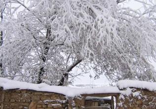 اخطاریه ای نسبت به احتمال بارش برف در مازندران