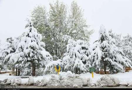 از فردا در استان با شدت بیشتری بارندگی خواهیم داشت / در ارتفاعات بارش به شکل برف می باشد