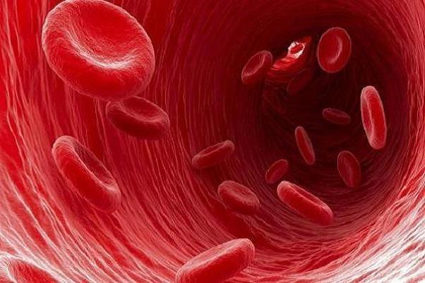 رزرو یا مصرف خون در سزارینهای غیراورژانسی تخلف است