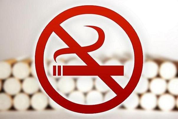 دخانیات سالانه ۷ میلیون قربانی می گیرد