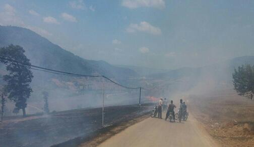 آتش به جان ۵۰ هکتار از زمین های کشاورزی روستای ازنی