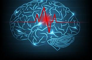 برگزاری کنگره بینالمللی جراحان مغز و اعصاب با حضور کشورهای خارجی در مازندران